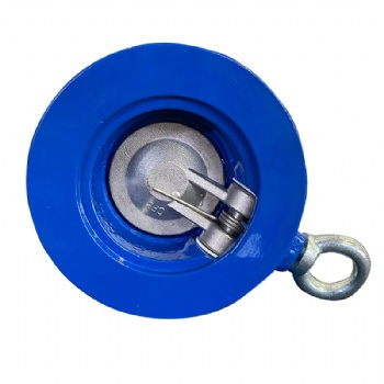 Wafer swing single plate check valve